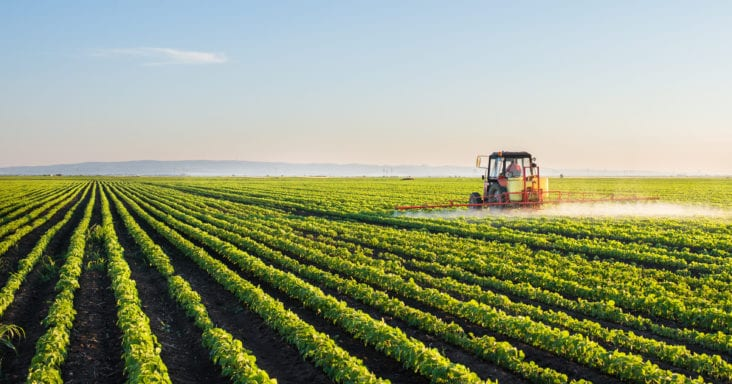 Fungicides or Herbicides