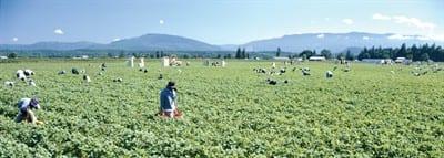 Successful Generational Farming