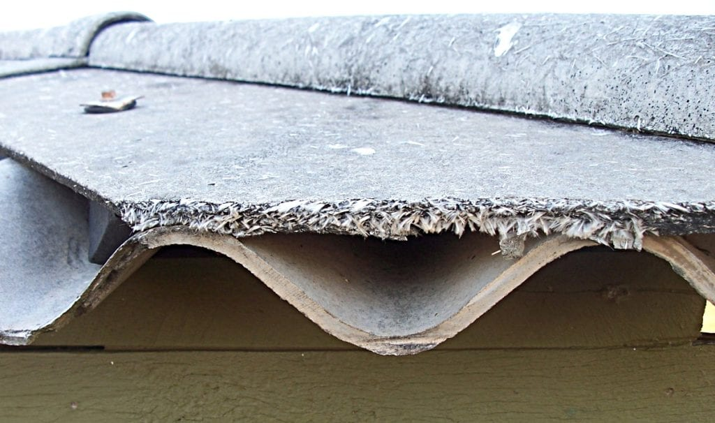 Importance Of Asbestos And Mold Removal
