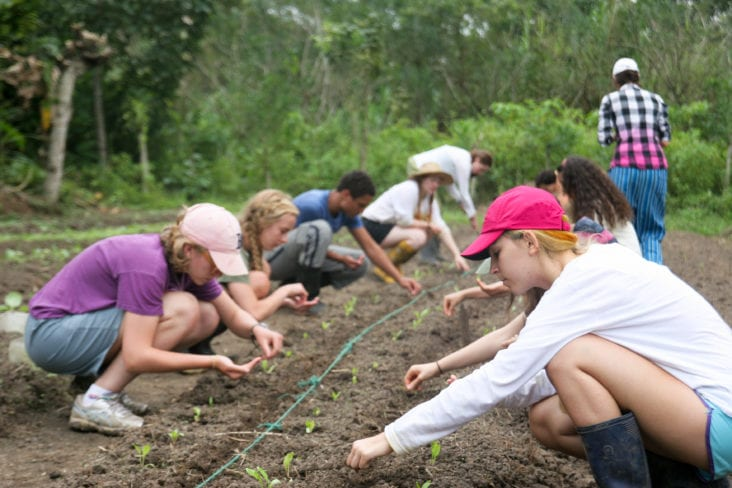 How Gardening Can Improve Your Teenagers Well-Being