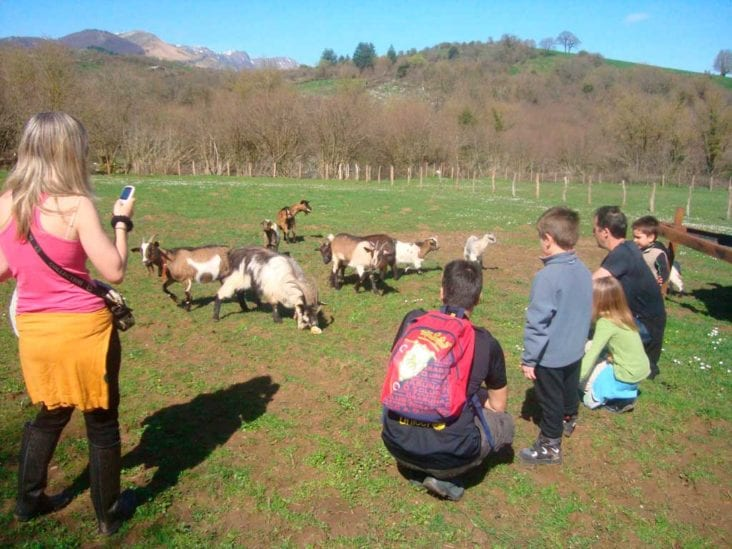 How to Start Your Very Own Rural Tourism?