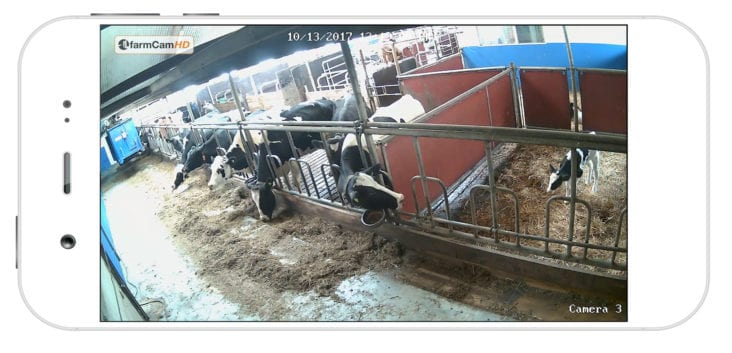 Why you need CCTV cameras on your farm