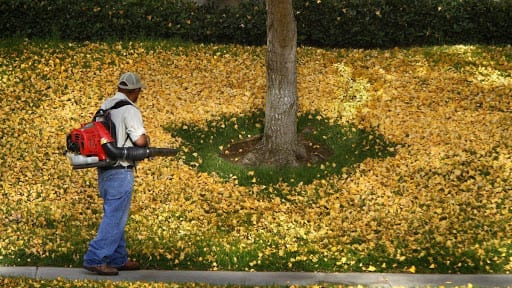Are Leaf blowers easy to handle
