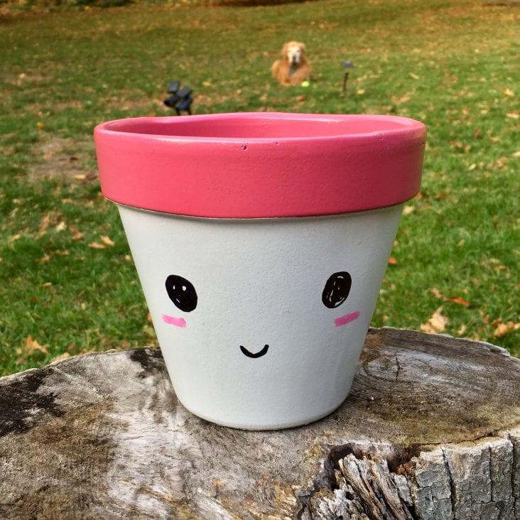 Smiley Face Pots