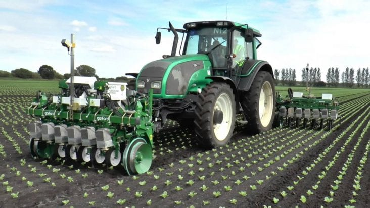 Automatic InRow Weeder