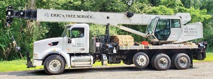 Benefits of Using Tree Service